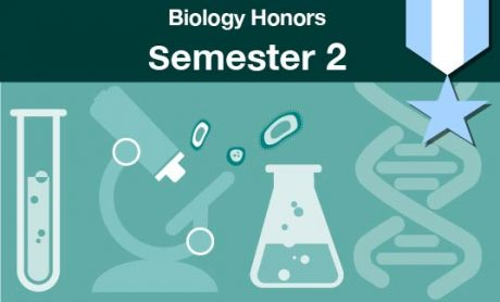 biology honors Semester two