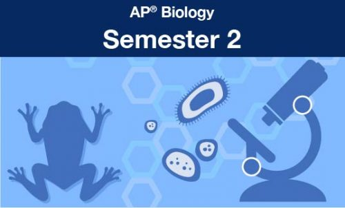 AP® biology Semester two