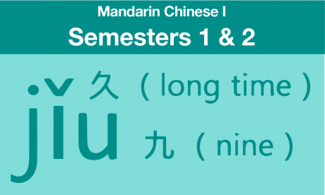 mandarin Chinese 1 course