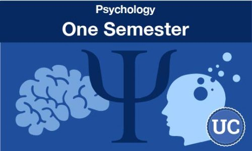 psychology - one semester course