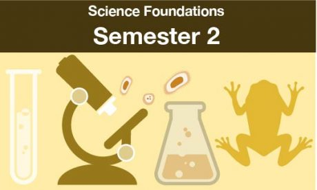 science foundations Semester two